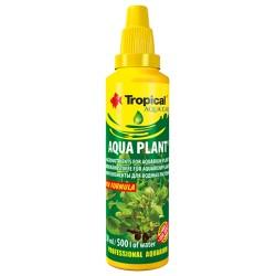 AQUA PLANT 30ml