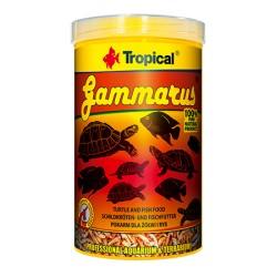GAMMARUS suszony kiełż zdrojowy saszetka
