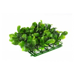 Roślinka Azalea Leaf Mat Small