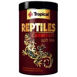 REPTILES CARNIVORE Tropical