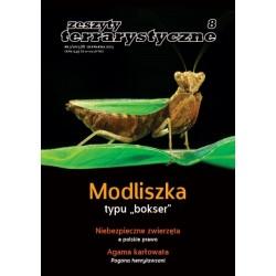 """Modliszka typu """"bokser""""  Zeszyty Terrarystyczne nr 3/2013 (8)"""