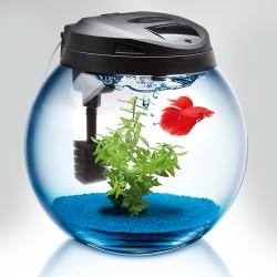Aquael Kompletny Zestaw Akwariowy Sphere 37