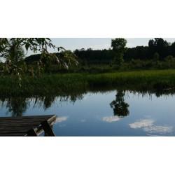 1 dniowe zezwolenie wody nizinne i górskie - niezrzeszeni PZW