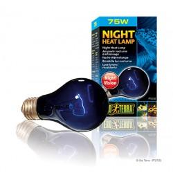 Nocna żarówka A19 75W Exo Terra