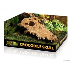 Dekoracja - Kryjówka Czaszka Krokodyla Exo Terra