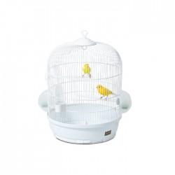 Calletta verticale klatka dla ptaków