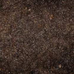 Gleba próchniczna - humus do terrarium 10l