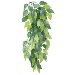 Sztuczna roślina wisząca z jedwabiu, Figowiec ø20x30cm